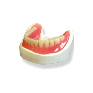 Lucitone FRS Flexible Denture Resin by Global Dental Solutions