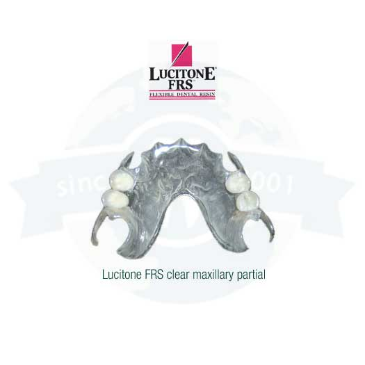 Partial Removables | Dentures | Global Dental Solutions